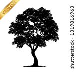 tree silhouette isolated on... | Shutterstock .eps vector #1319816963