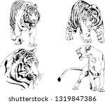 vector drawings sketches... | Shutterstock .eps vector #1319847386