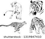 vector drawings sketches... | Shutterstock .eps vector #1319847410