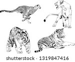 vector drawings sketches... | Shutterstock .eps vector #1319847416