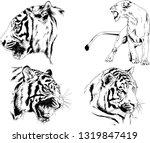 vector drawings sketches... | Shutterstock .eps vector #1319847419