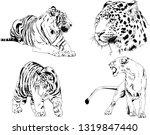 vector drawings sketches... | Shutterstock .eps vector #1319847440
