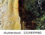 treil running along the...   Shutterstock . vector #1319859980