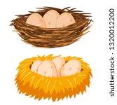 eggs in the nest | Shutterstock .eps vector #1320012200