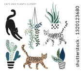 Cute Cats And House Plants On...