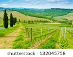 vineyard on a hill beside a... | Shutterstock . vector #132045758