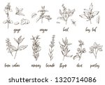 hand drawn herbs and spices.... | Shutterstock .eps vector #1320714086