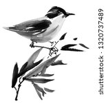 Watercolor and ink illustration of bird on the tree branch, sumi-e oriental painting, hand drawn art - stock photo