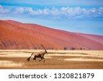 oryx antelope and orange dunes... | Shutterstock . vector #1320821879