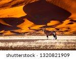 oryx antelope and orange dunes... | Shutterstock . vector #1320821909