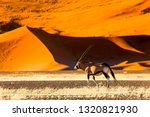 oryx antelope and orange dunes... | Shutterstock . vector #1320821930