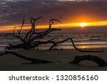 sunrise on driftwod beach  ... | Shutterstock . vector #1320856160