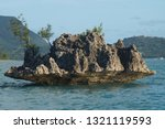 boat trip from le morne on... | Shutterstock . vector #1321119593