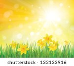 vector of daffodil flowers on... | Shutterstock .eps vector #132133916