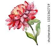red aster floral botanical... | Shutterstock . vector #1321362719