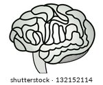 human brain model. jpg... | Shutterstock . vector #132152114