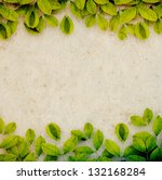 mulberry paper with creepers ... | Shutterstock . vector #132168284