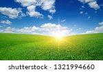 green meadow under blue sky...   Shutterstock . vector #1321994660