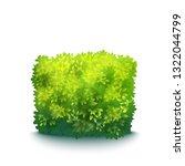 vector realistic fresh green...   Shutterstock .eps vector #1322044799