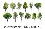 collection of isolated trees on ...   Shutterstock . vector #1322138756