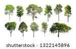 collection of isolated trees on ...   Shutterstock . vector #1322145896