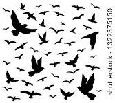Stock vector vector pattern black flock of flying birds 1322375150