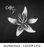 vector chalk drawn sketch of... | Shutterstock .eps vector #1322391353
