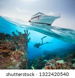 split photography of safari... | Shutterstock . vector #1322420540