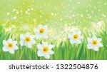 vector daffodil flowers on... | Shutterstock .eps vector #1322504876