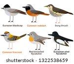 cute bird vector illustration... | Shutterstock .eps vector #1322538659