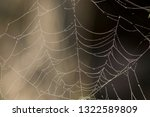 spider web with morning dew.... | Shutterstock . vector #1322589809