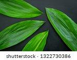 bright spring green leaves on... | Shutterstock . vector #1322730386