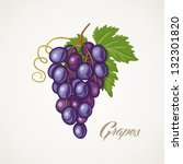 grapes | Shutterstock .eps vector #132301820
