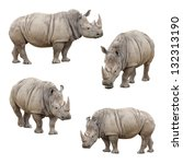 Set Of Four Rhinoceros Isolate...