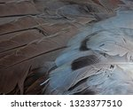 wing on background   Shutterstock . vector #1323377510