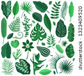 collection of green tropical... | Shutterstock .eps vector #1323409520