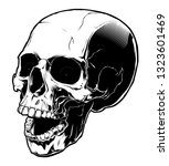 skull illustration in tattoo... | Shutterstock . vector #1323601469
