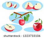 apple in different portions.... | Shutterstock . vector #1323733106