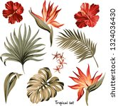 set of exotic tropical flowers... | Shutterstock .eps vector #1324036430