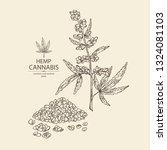 background with hemp  cannabis...   Shutterstock .eps vector #1324081103