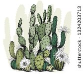 Square Card With Green Cactus...