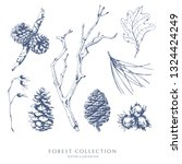 vector collection of forest... | Shutterstock .eps vector #1324424249