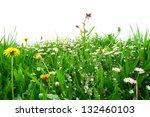 flowers on a field against an... | Shutterstock . vector #132460103