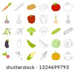 different kinds of vegetables... | Shutterstock .eps vector #1324699793