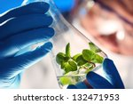 scientist holding and examining ... | Shutterstock . vector #132471953