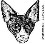 black and white vector... | Shutterstock .eps vector #132491228