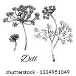 dill ink hand drawn set. branch ... | Shutterstock .eps vector #1324951049