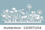 Echinacea  Chamomile  Schefler  ...