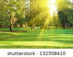 green lawn with trees in park... | Shutterstock . vector #132508610