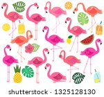 vector collection of flamingos...   Shutterstock .eps vector #1325128130